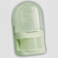 Night light with motion detector