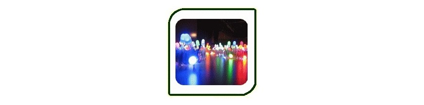 LEDs | Electronic Components | Buy / Sell | Enovatera